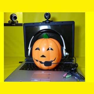 Webcam 1,3 Mio Pixel mit eingebautem  Mikrofon + Headset